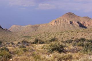 Desierto de chihuahua